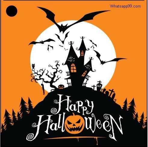 Halloween Whatsapp DP
