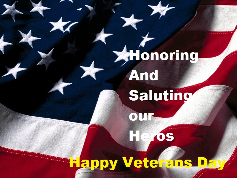 Happy Veterans Day Whatsapp Status