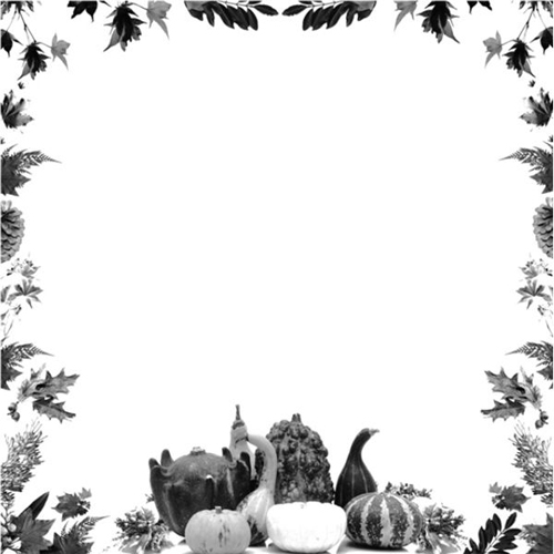 Thanksgiving black and white borders