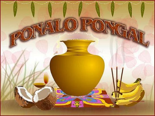 Pongal Images Wishes