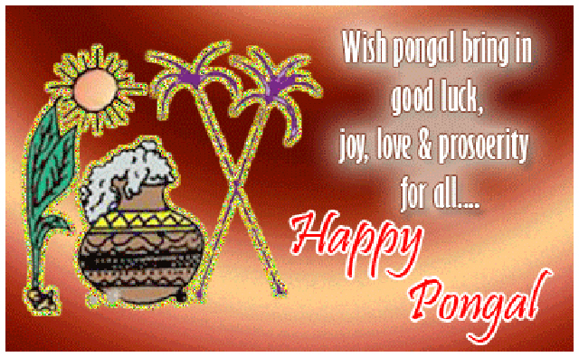 Pongal Wishes Love