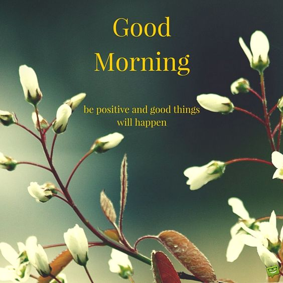 Happy Good Morning Images HD
